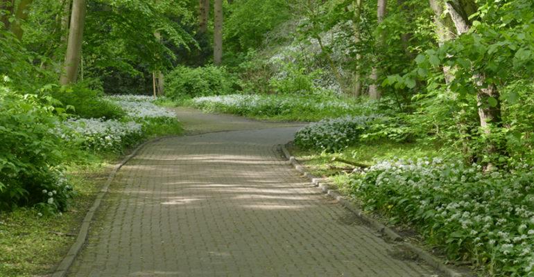 Ein Spaziergang im Kurpark Wilhelmshaven